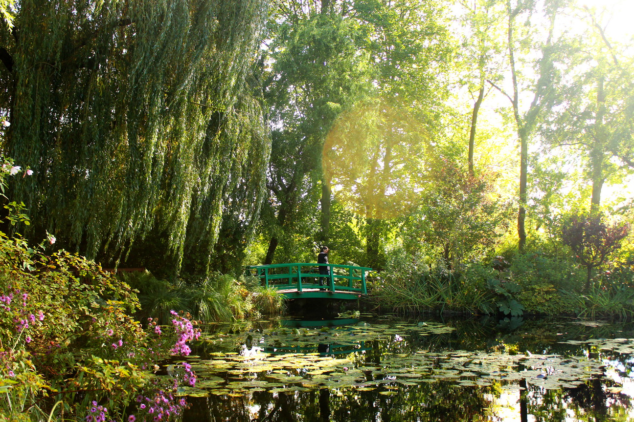 Monet s water lilies in giverny the selfish years for Monet home