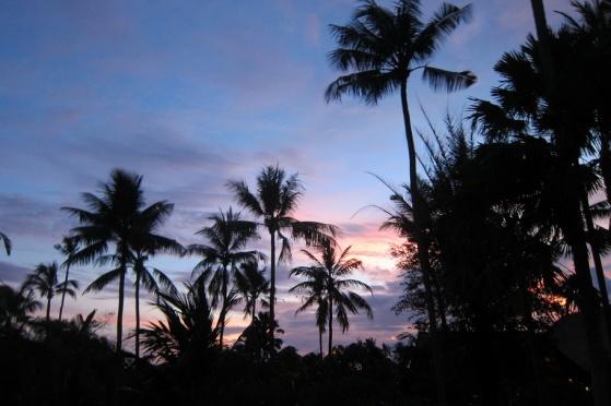 Bali 017