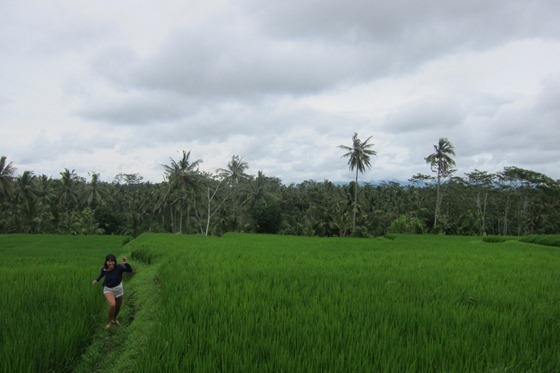 Bali Cooking 02