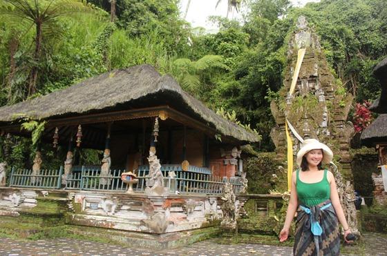 Bali Temples 19