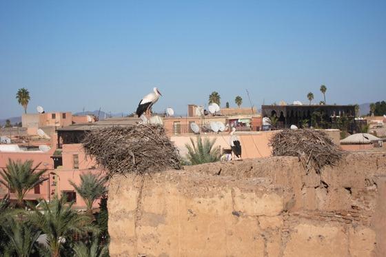 Marrakech 20