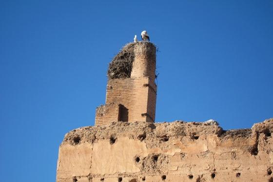 Marrakech 21
