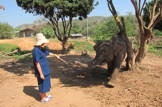 Chiang Mai 429