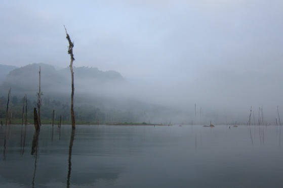 The Lake 13