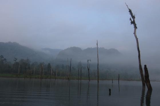 The Lake 14