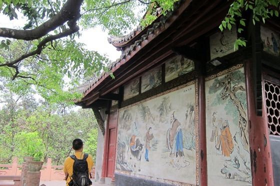 Chengdu 19