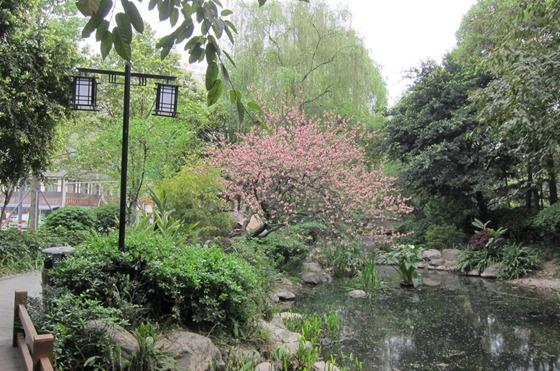 Chengdu 23