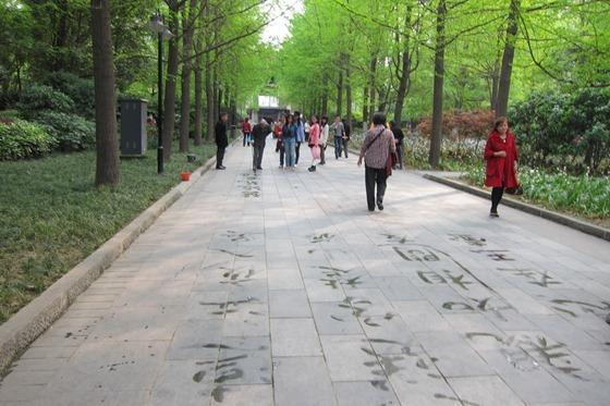Chengdu 26