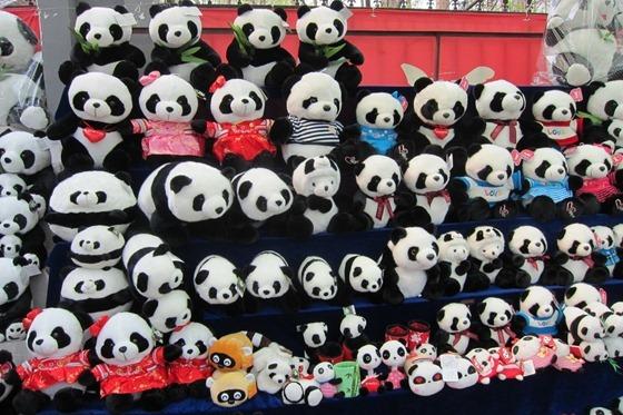 Pandas 24