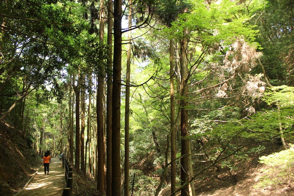 Arashiyama 04