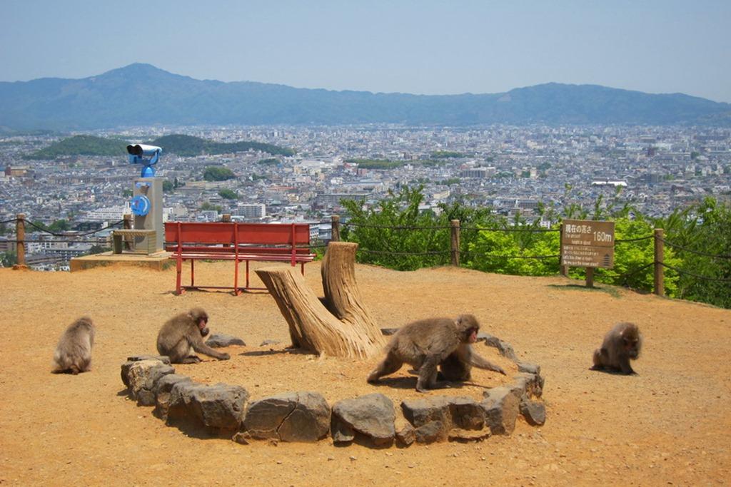 Arashiyama 09