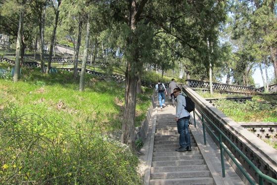 Forbidden City 014