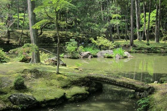 Moss Temple 12