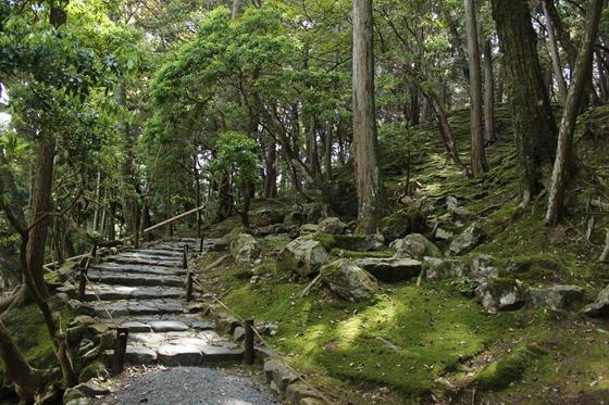 Moss Temple 13