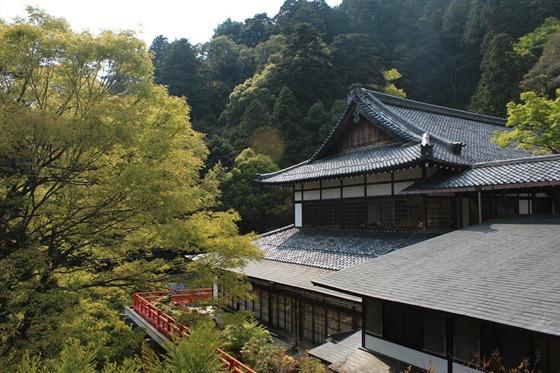 Mount Kurama 12