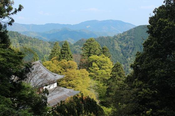 Mount Kurama 13