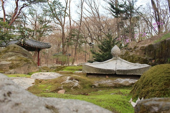 Seoul 19