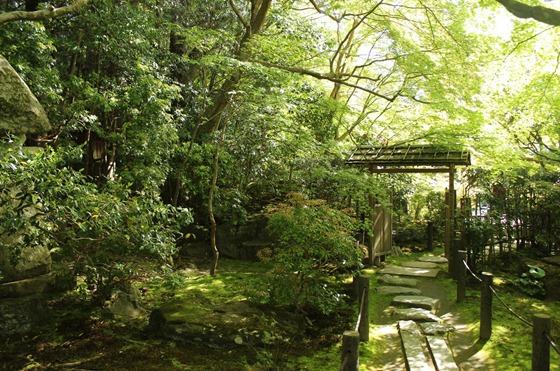 Tenjuan Garden 05