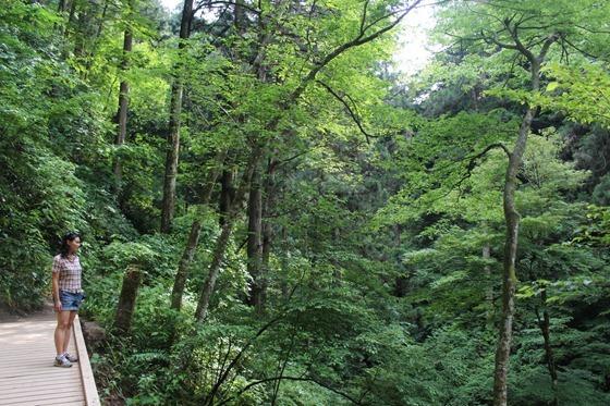 Mount Takao 06
