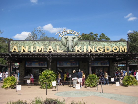 Animal Kingdom 01