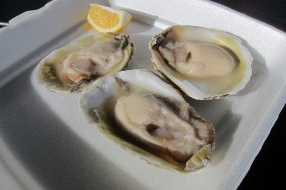 NZ Food 24