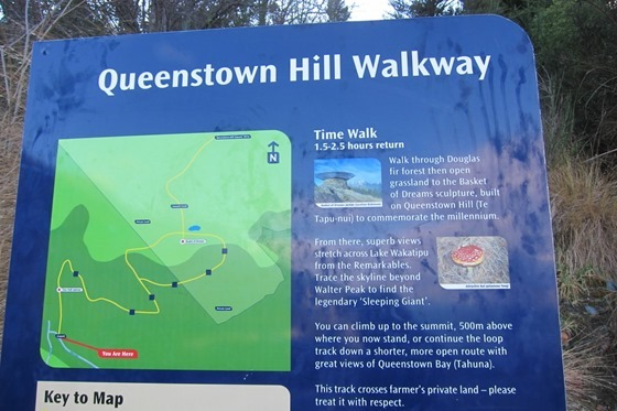 Queenstown Hill 01