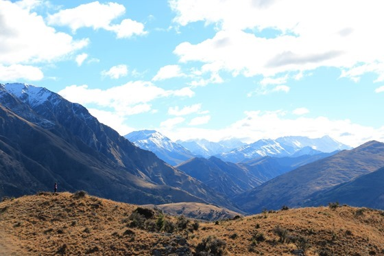 Queenstown Hill 16