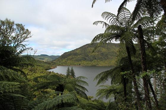 Rotorua 17