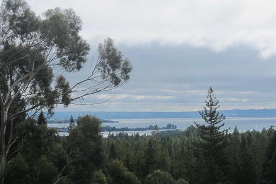 Rotorua 19