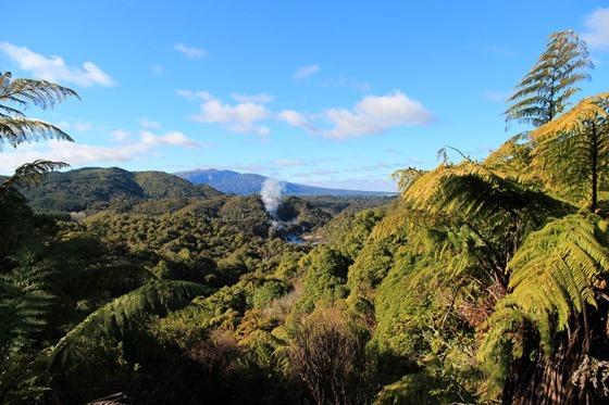 Rotorua 25