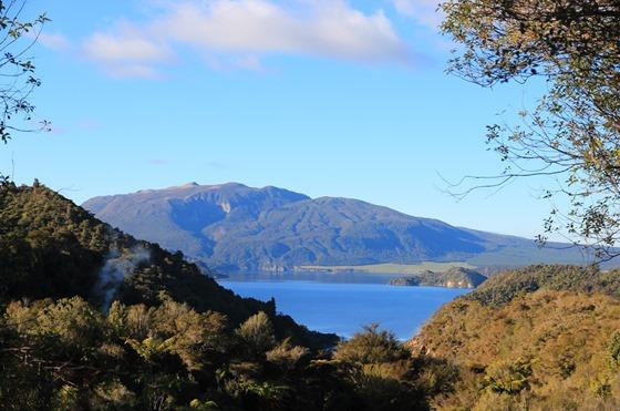 Rotorua 35
