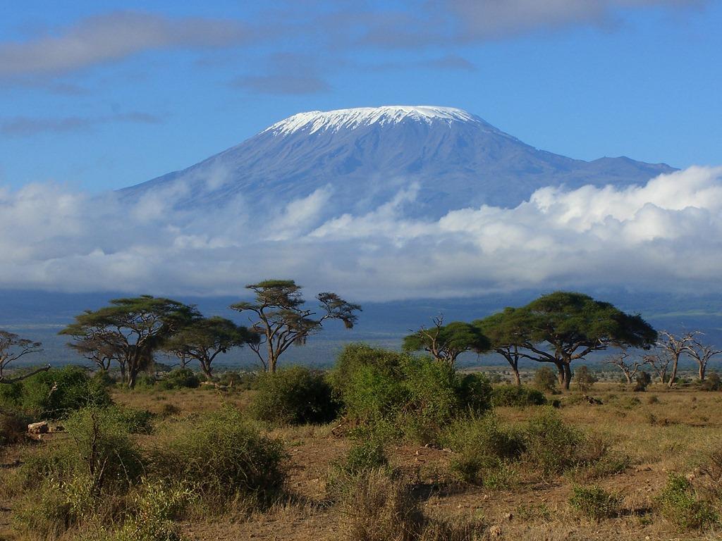 Kilimanjaro nature