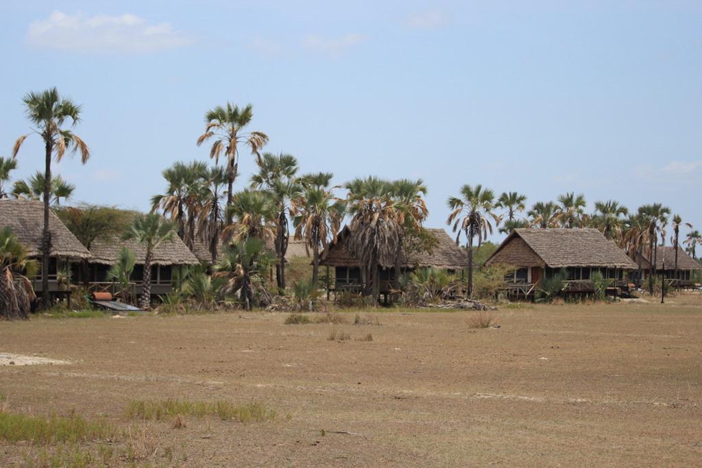 Mrambi Lodge 001