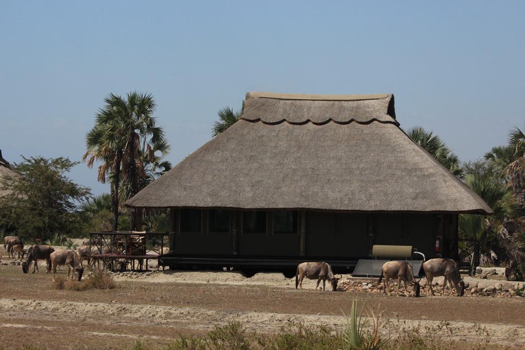 Mrambi Lodge 022