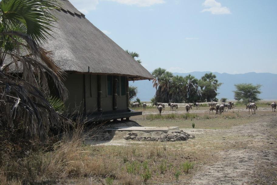 Mrambi Lodge 023