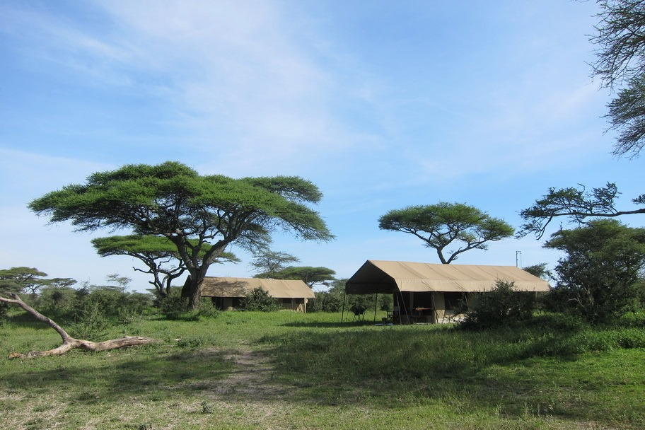 Glamping at Ndutu Under Canvas in the Serengeti | The