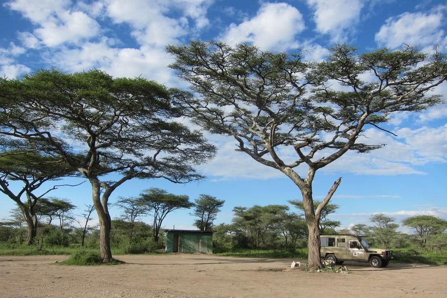 Ngorongo Park Day 1 028
