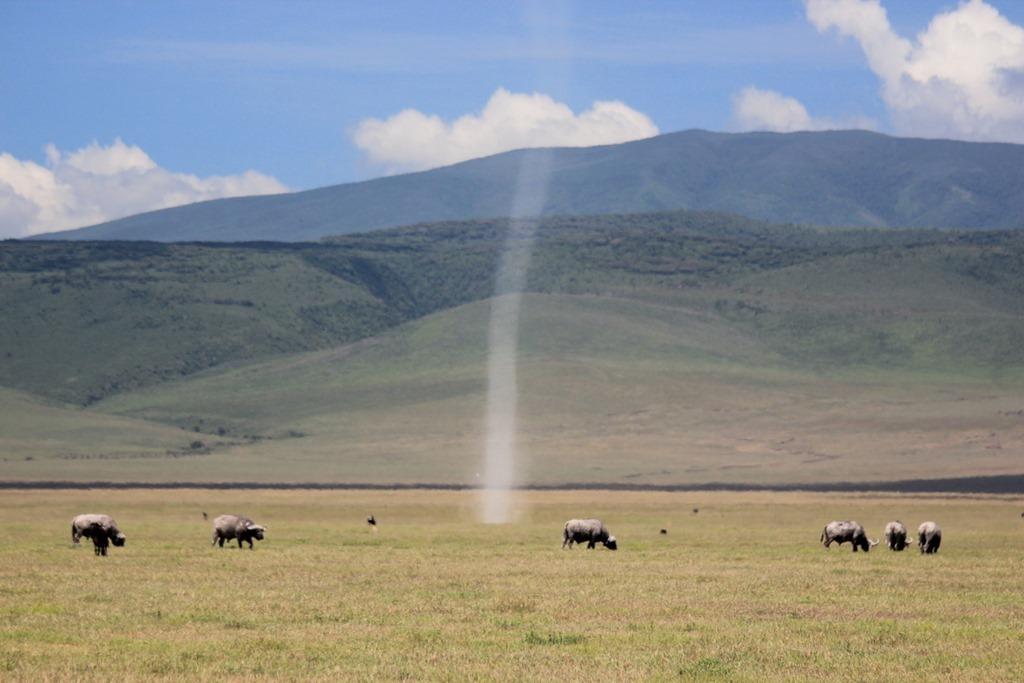 Ngorongoro Crater 020