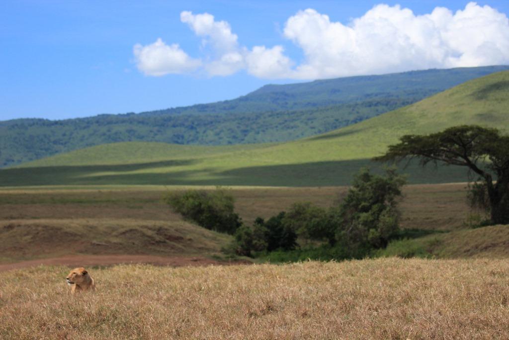 Ngorongoro Crater 023