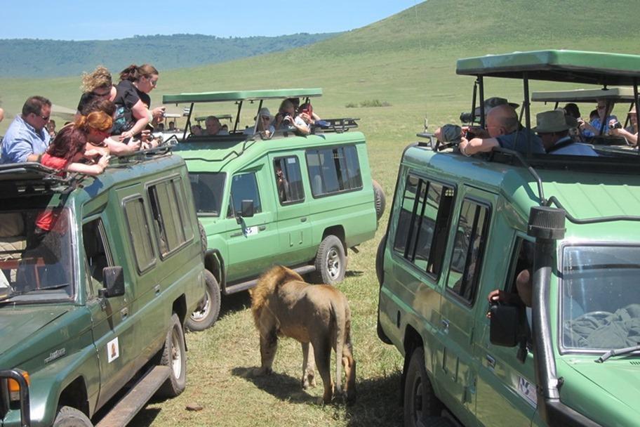 Ngorongoro Crater 030