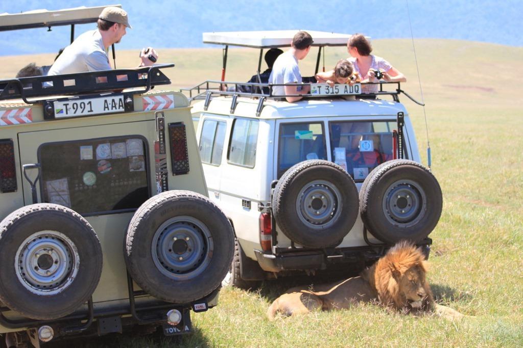 Ngorongoro Crater 033