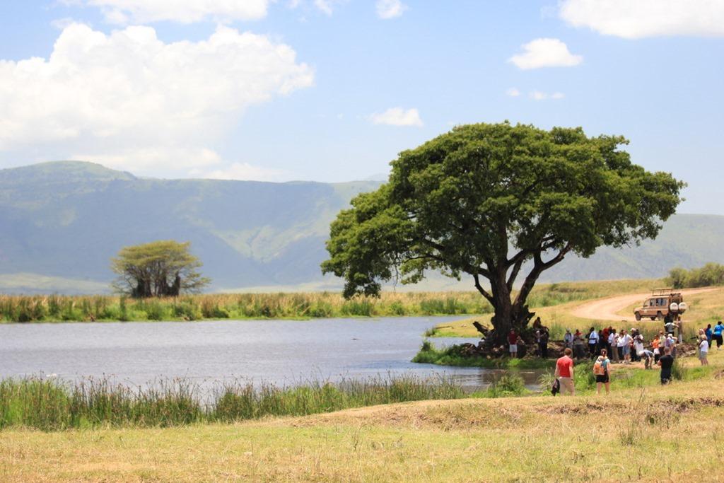 Ngorongoro Crater 043