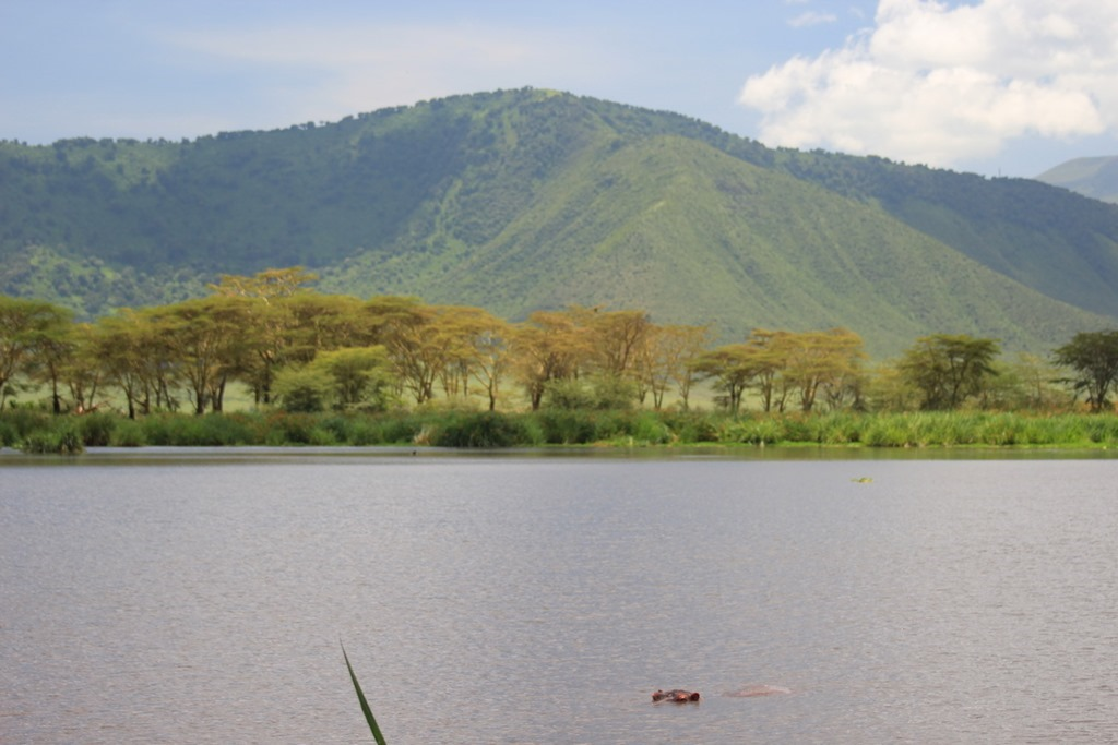Ngorongoro Crater 045