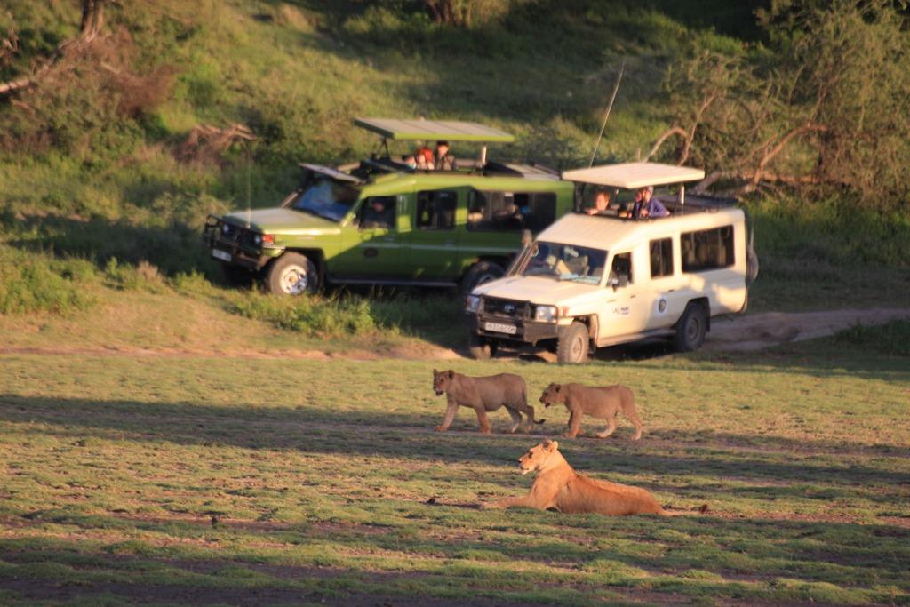 Ngorongoro Park Day 2 013