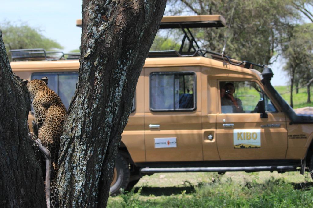 Ngorongoro Park Day 2 033