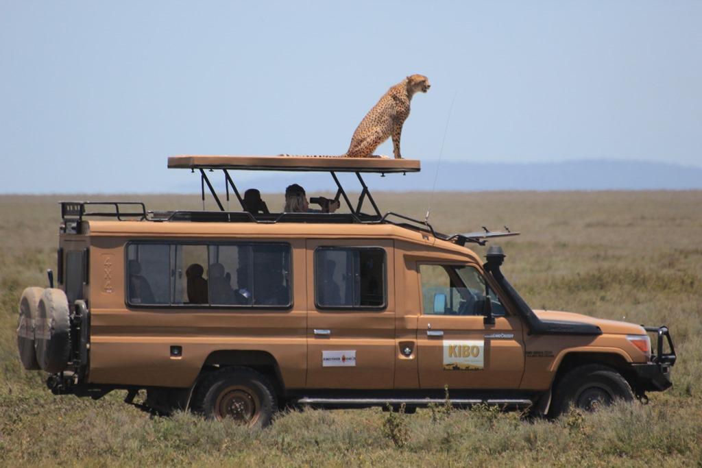 Ngorongoro Park Day 2 039