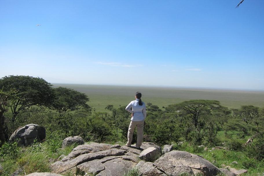 Serengeti 023