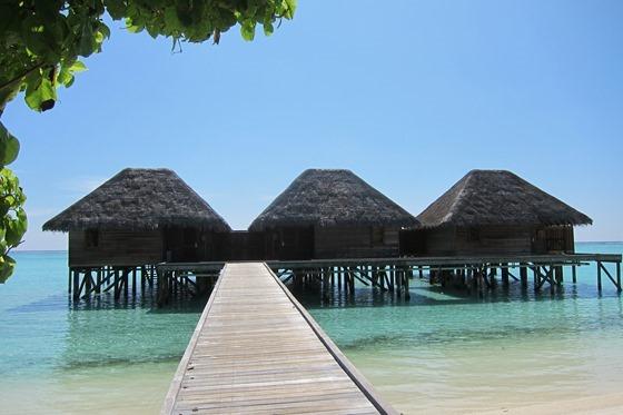 Maldives 271