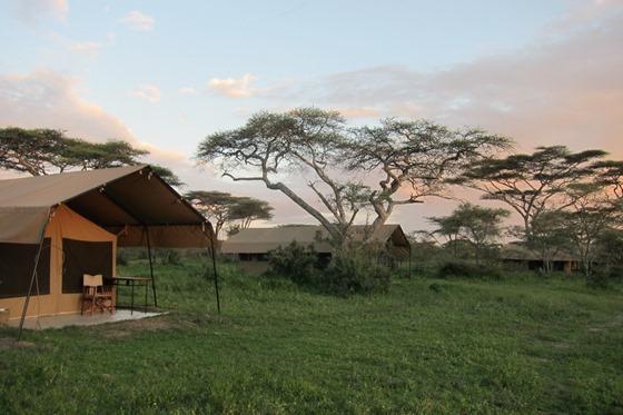 Ndutu Under Canvas Camp 004